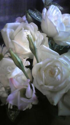 お誕生日 お花 花束