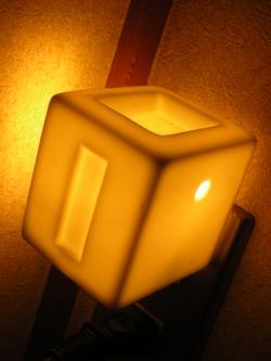 015_convert_20090201213024.jpg