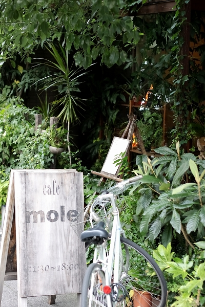 ambient cafe mole010