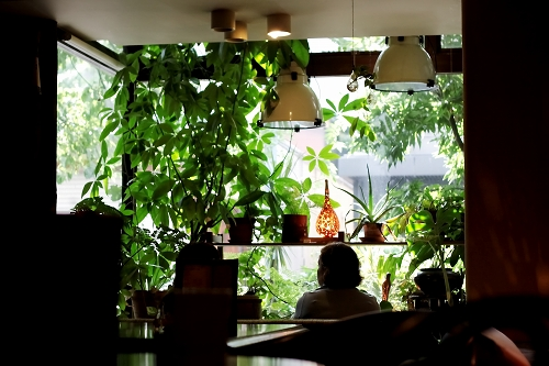 ambient cafe mole004