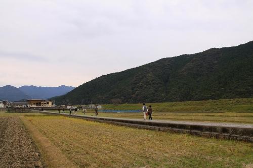 熊野大社019