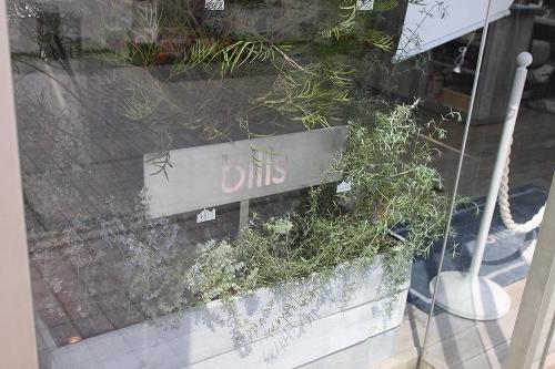 bills(横浜)006