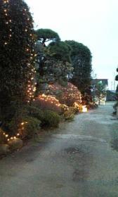 クラノ華フェ◇庭のイルミネーション