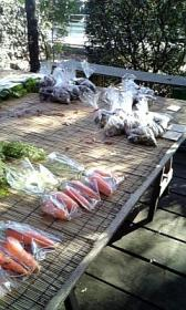 ゼルコバ◇野菜販売