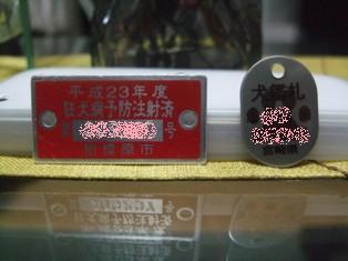 DSCF0001_20110705230830.jpg