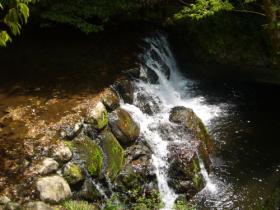 箕面の滝04