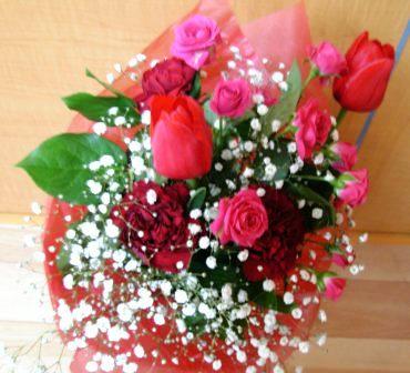 哲ちゃんの薔薇