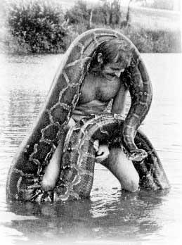 indian_python.jpg