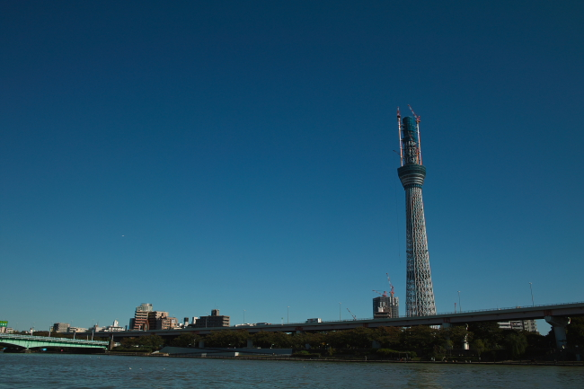2010 11 06_5214
