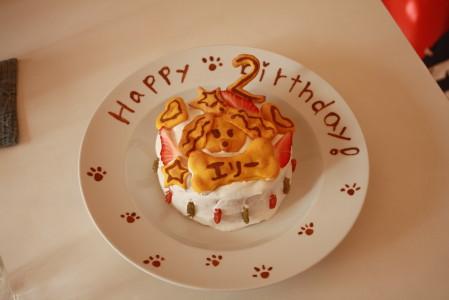 エリーのケーキ