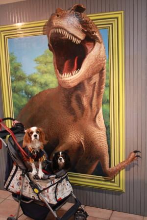 チャコ&エリー恐竜の食べられそう