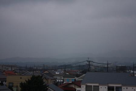 今年初めての雨