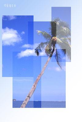 090915-no02.jpg