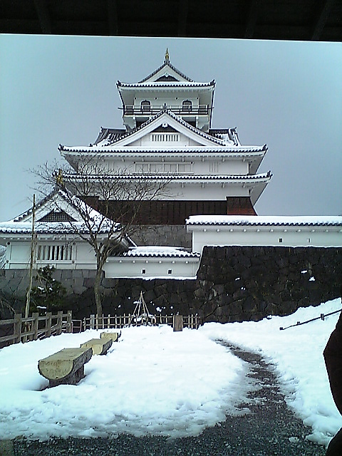 20090203_3