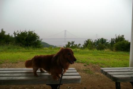 明石海峡大橋と…