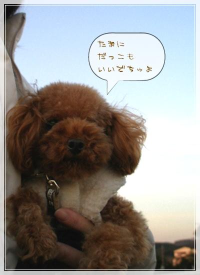 抱っこ~~~