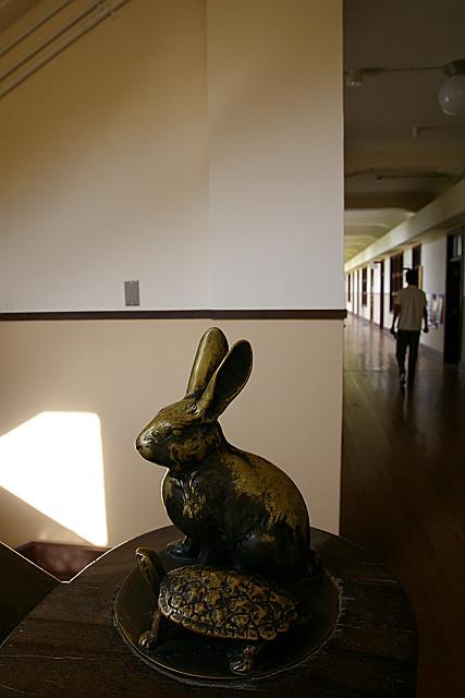 ウサギとカメ スタート