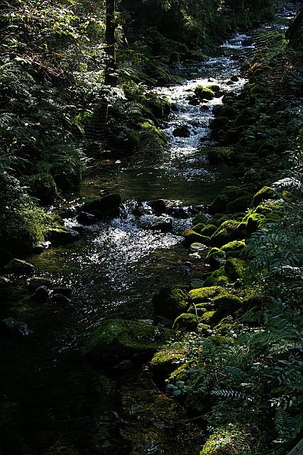 醒ヶ井渓谷