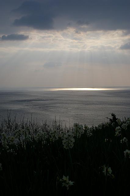 海面に 雲を射抜いて 光さす