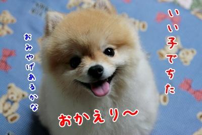 1009270_20100927102840.jpg