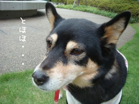 ちきさん 2