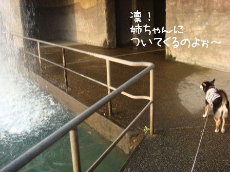 水のカーテン3