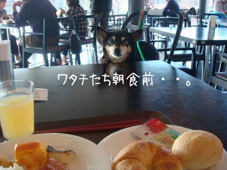 レジーナ朝食①