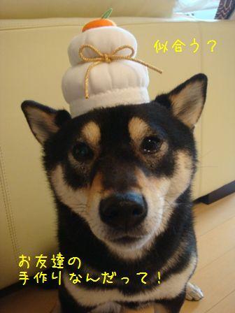 あけましておめでとう2010③