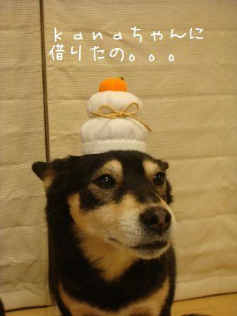 あけましておめでとう2010②