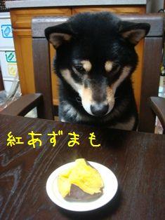 食べ④-1