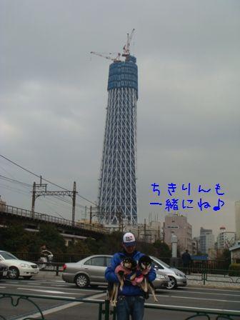 スカイツリータワー⑤