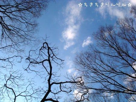 代々木公園③
