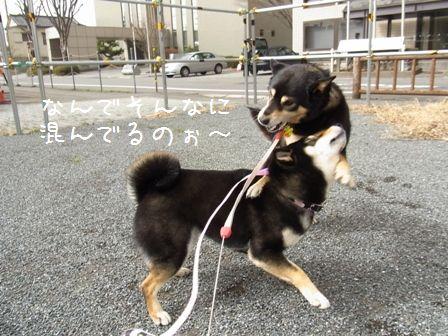 お実家LIFE①