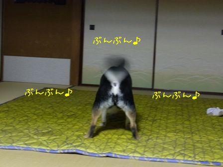 お実家LIFE③