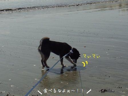 銚子マリーナ②