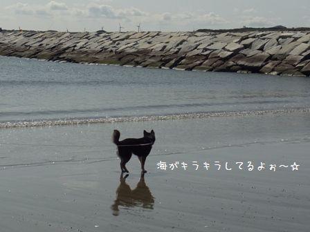 銚子マリーナ③