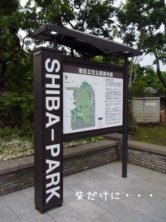 SHIBAーPARK②