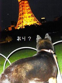 東京タワー②