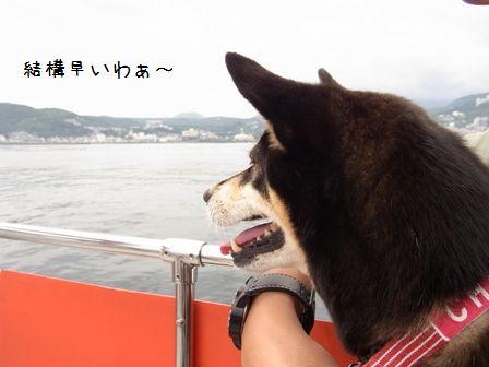 はんなり伊豆旅行⑥
