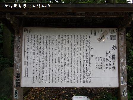 来宮神社②