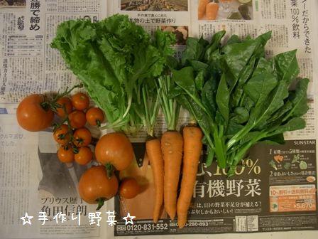 kanaちゃん父さん母さんのお野菜