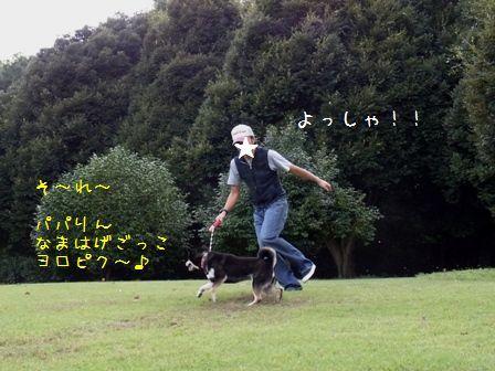 森林公園②-⑤