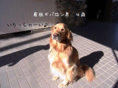 しぶごえ弐号館①