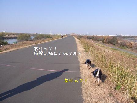 道満パーク③