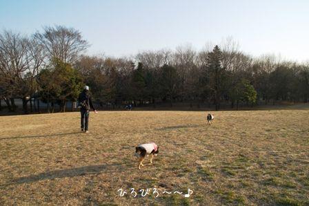 府中の森公園①
