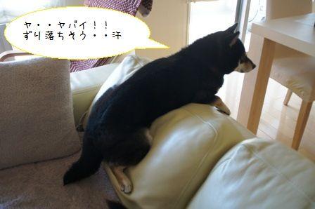 萌えポーズ2-2