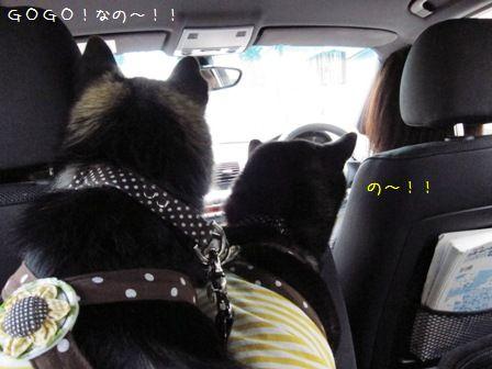 お実家なお盆2011②-③
