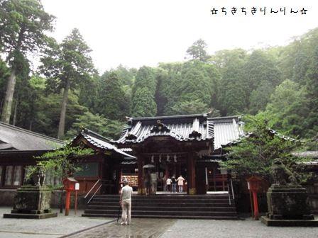 箱根神社②