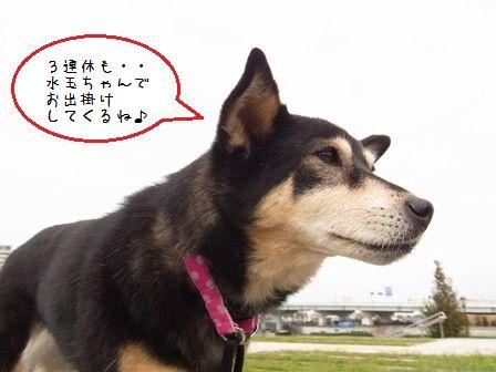 Happy Sky②