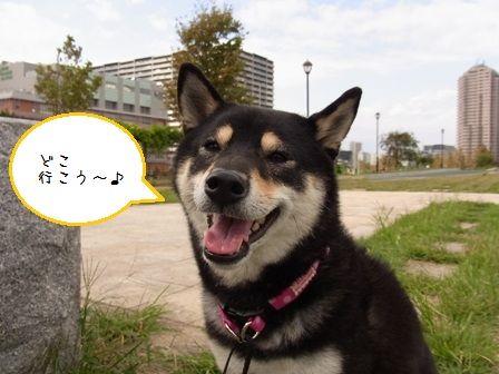 Happy Sky③